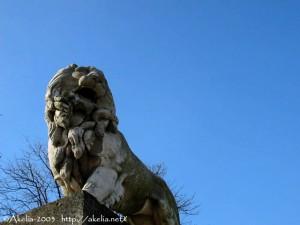 lionlux01